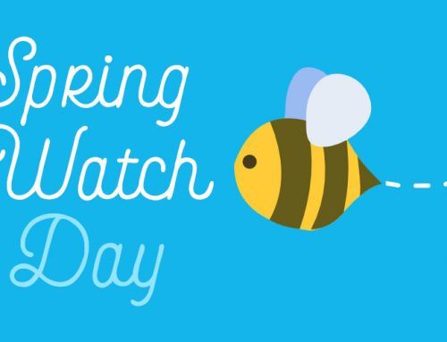 Spring Watch Day at Goytre Wharf